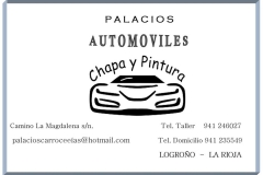 Palacios Automóviles